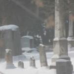 Gun control image of cemetery